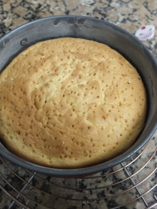 genoise sponge with holes!
