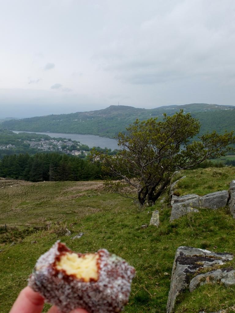 Lamingtons visit Wales