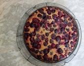 Black and blue berry tart