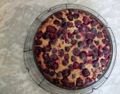 Black and blue berry tart