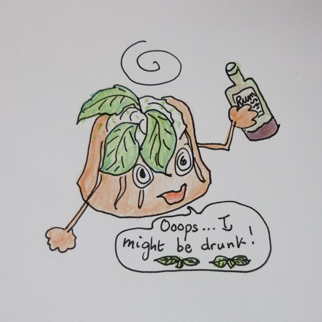Pastel borracho - Mojito rum baba