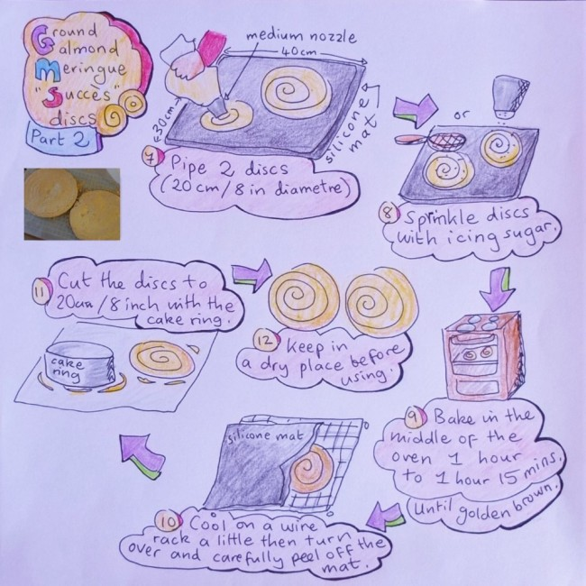 succes discs illustrated recipe 2