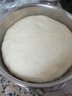 Pain de mie dough - after first rise