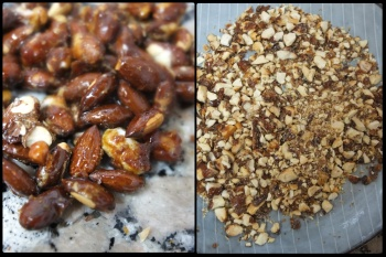 Crushed pralines - citrus passion