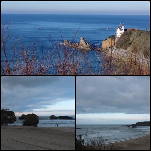 Biarritz coastline