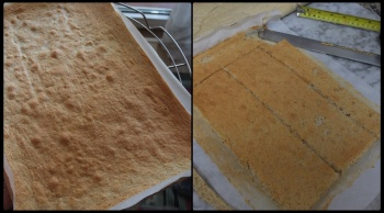Almond sponge layer