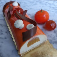 'Mazing mandarin mousse cake recipe! Bûche, round entremets or verrines ...!