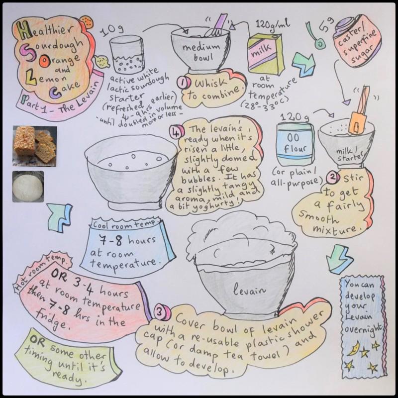 Levain for Sourdough Orange 'n Lemon cake illlustrated recipe