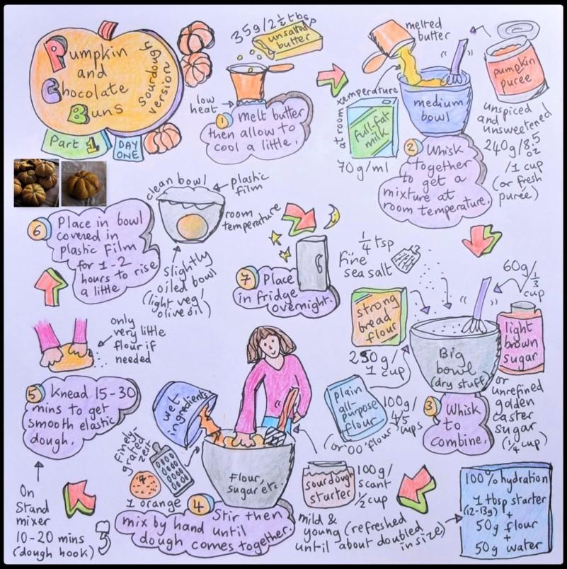 Pumpkin and chocolate buns, dough illustrated recipe