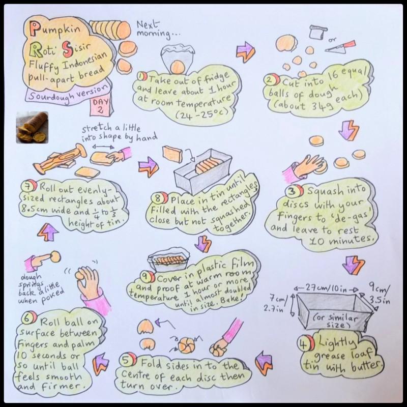 Sourdough pumpkin roti sisir illustrated recipe, shaping