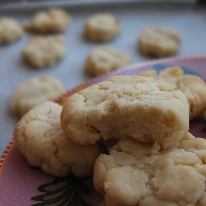 Vegan macadamia vanilla cookies