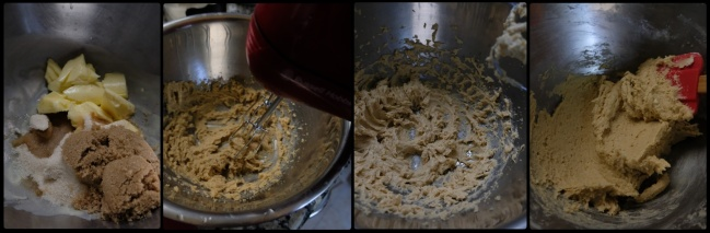 Chocolate chip cookie dough 2