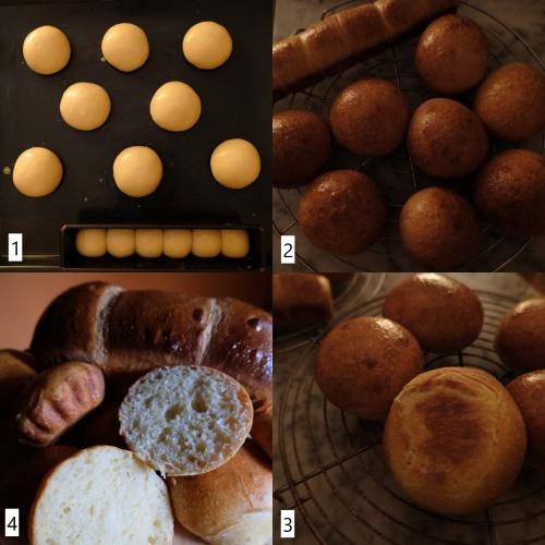 Baking sourdough brioche buns